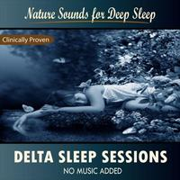 Nature Sounds for Sleep and Relaxation - Delta Sleep Sessions: Nature Sounds for Deep Sleep