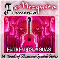 Various flamenco guitarrist - Mezquita Flamenca: Entre dos aguas. 16 tracks of flamenco spanish guitar