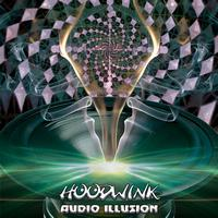 Hoodwink - Audio Illusion