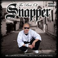 Snapper - The Best of Snapper (Explicit)