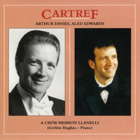 Amrywiol / Various Artists - Cartref