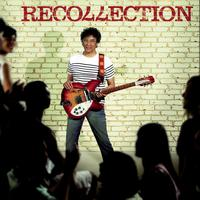 Laurent Voulzy - Recollection