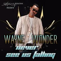 Wayne Wonder - Never See Us Falling