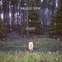 Brand New - Daisy (iTunes Version)