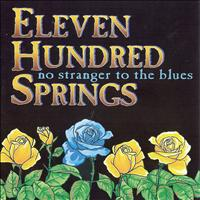 Eleven Hundred Springs - No Stranger To The Blues