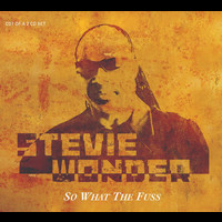 Stevie Wonder - So What The Fuss Global Soul Remix (UK Napster Exclusive)