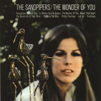 The Sandpipers - The Wonder Of You