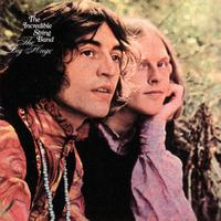 The Incredible String Band - The Big Huge