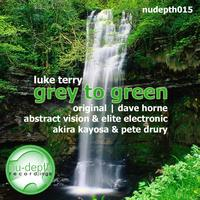 Luke Terry - Grey To Green