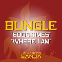 Bungle - Good Times / Where Am I