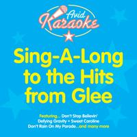 AVID Professional Karaoke - Sing A Long To The Hits From Glee (Professional Backing Track Version)