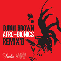 Djinji Brown - Afro-Bionics Remix'd