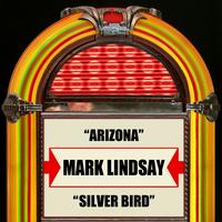 Mark Lindsay - Arizona  Silver Bird