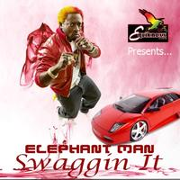 Elephant Man - Swaggin It