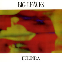 big leaves - Belinda