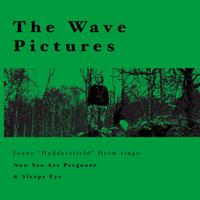 The Wave Pictures - Jonny Helm Sings