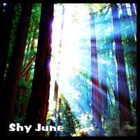 Shy June - A Brief Glimpse...