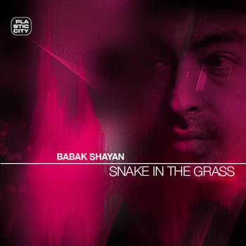 Babak Shayan - Snake In The Grass