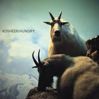 Kosheen - Hungry