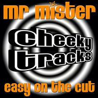 Mr Mister - Easy On The Cut