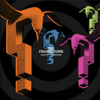The Chameleons - Acoustic Sessions