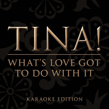 Tina Turner - What's Love Got To Do With It [Karaoke Version] (Karaoke Version)