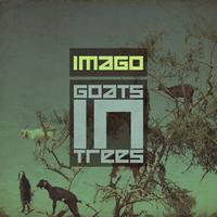 Imago - Goats In Trees