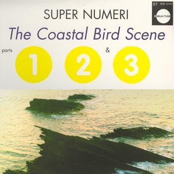 Super Numeri - The Coastal Bird Scene