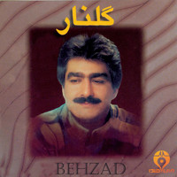Behzad - Golnar (Iranian Traditional Music)