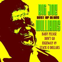 Big Joe Williams - Best of Blues