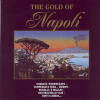 Various Artists - Duck Records - The Gold Of Napoli Vol 2