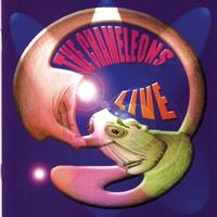 The Chameleons - Live at The Academy Vol. 1