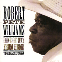 Robert Pete Williams - Long Ol' Way From Home