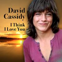 David Cassidy - I Think I Love You