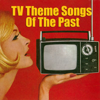 The TV Theme Players - Tv Theme Songs of the Past