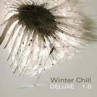 Various Artists - Winter Chill Deluxe 1.0