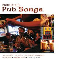 Various Artists - Pure Irish Pub Songs