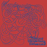 The Brian Jonestown Massacre - Iluminomi