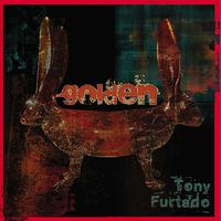 Tony Furtado - Golden