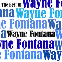 Wayne Fontana - The Best Of Wayne Fontana