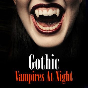 Various Artists - Gothic - Vampires At Night