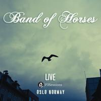 Band Of Horses - Live P3 Sessions