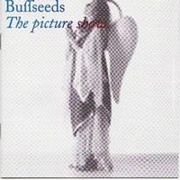 Buffseeds - The Picture Show