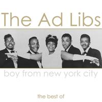 THE AD LIBS - Boy From New York City - The Best Of