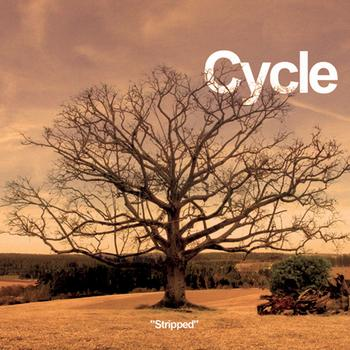 Cycle - Stripped