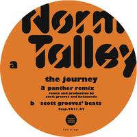 Norm Talley - The Journey Scott Grooves Panther remix