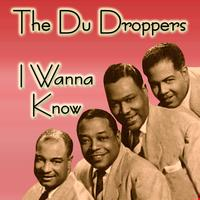 The Du Droppers - I Wanna Know