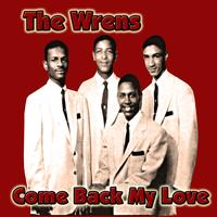 The Wrens -  Come Back My Love