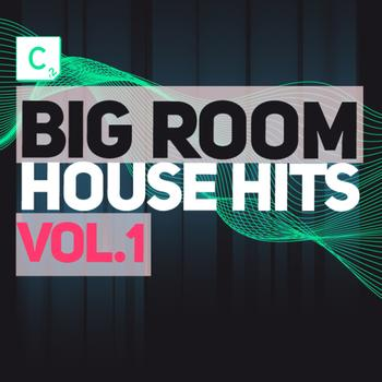 Various Artists - Big Room House Hits