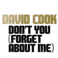 David Cook - Don't You (Forget About Me)